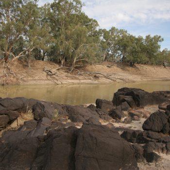 Darling River - Bourke