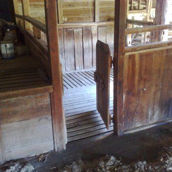 Pine Glen shed